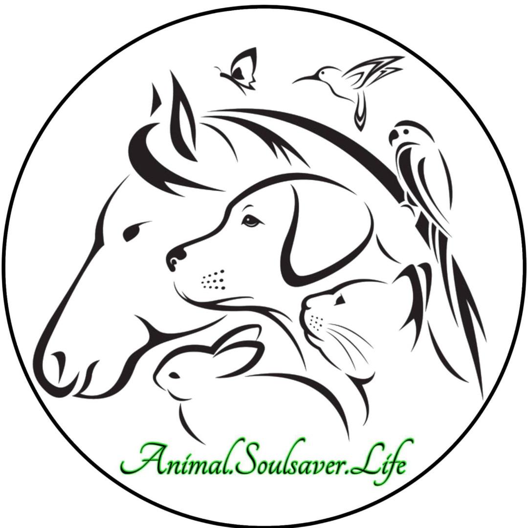 Soulsaver Animal welfare