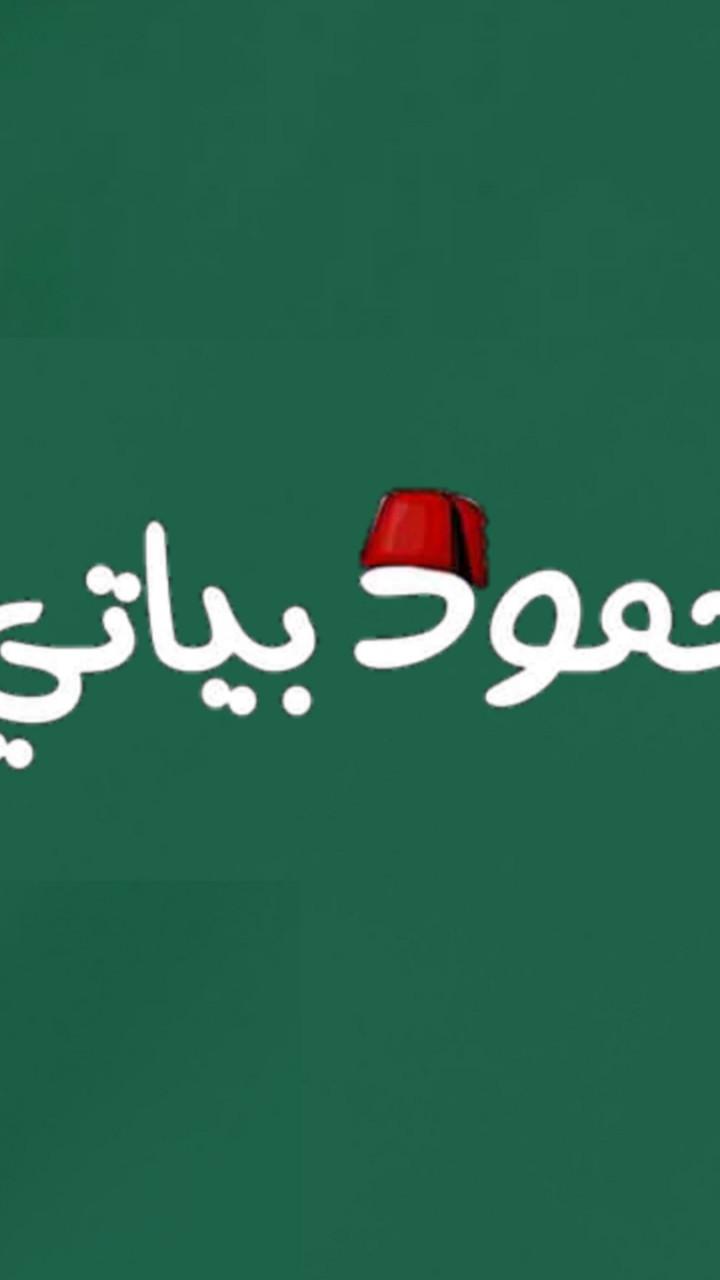 bayat mahmoud