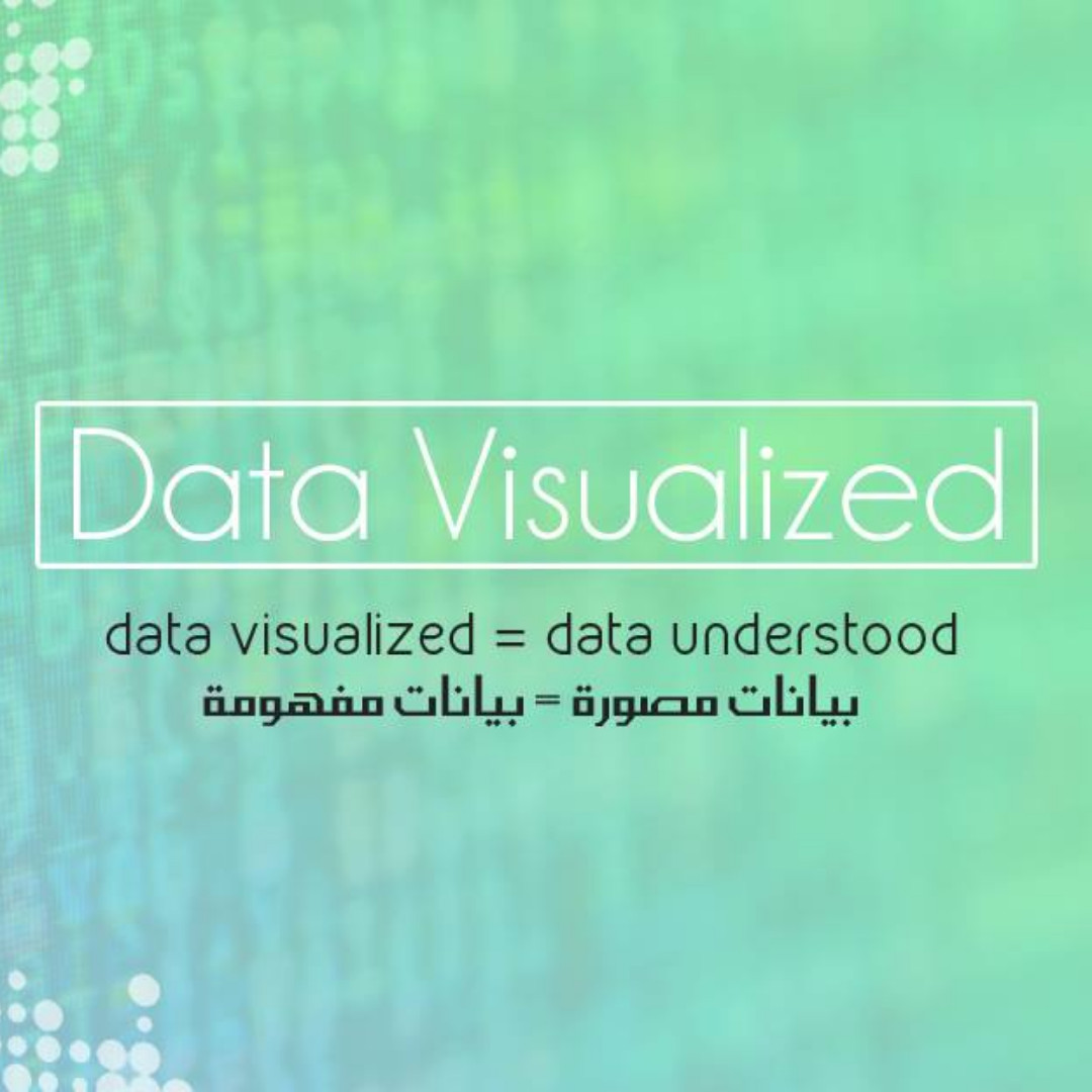 Data Visualized